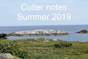Cutler Notes – 05 August 2019