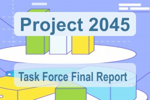 Project 2045 Final Report